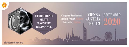 Ultrasound meets Magnetic Resonance Conference