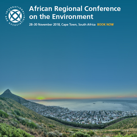 African Regional Conf. on the Environment