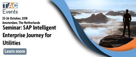 SAP Intelligent Enterprise Journey for Utilities